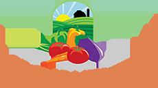Exportación de frutas y verduras